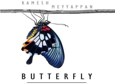 butterfly2_406x305_5d2733627b_jpg406x296