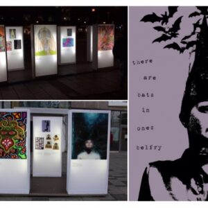 Photographs showing 8x4 light boxes with images from 35 artists outdoors in Stratford. Including detailed image of my piece Bats in the Belfry.