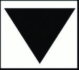 Black Triangle Campaign