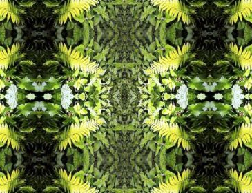 Green symmetrical artwork