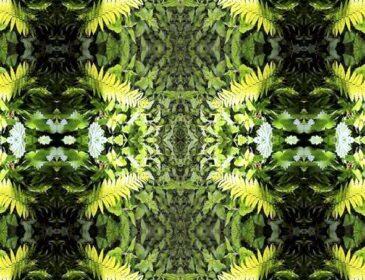 Green symmetrical artwork