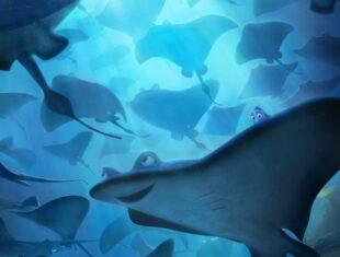 Still of cartoon Mantaray fish