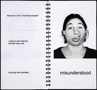Gwynneth VanLaven 'Misunderstood'