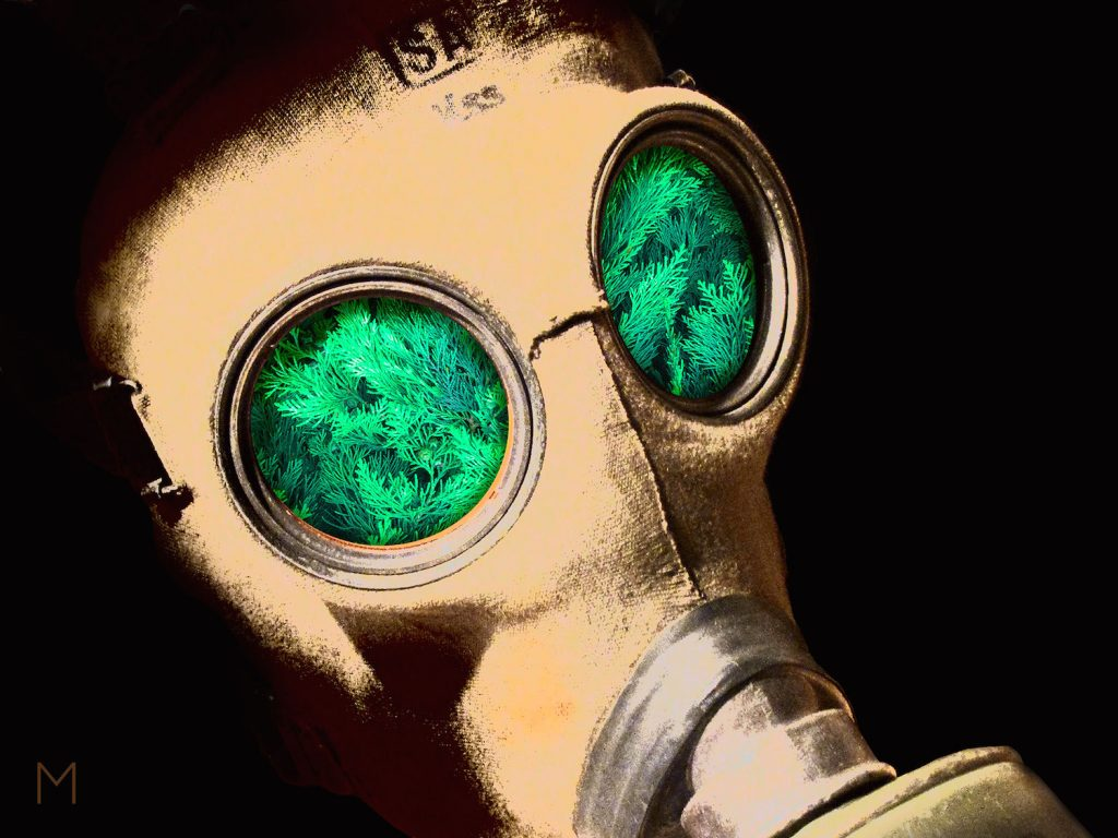 Digital image of a gas mask with foliage set in the eye holes