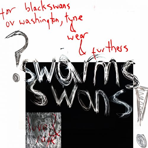digital black and white image of scratched words 'black swans'