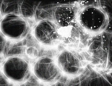 black and white abstract graphic with lots of circles