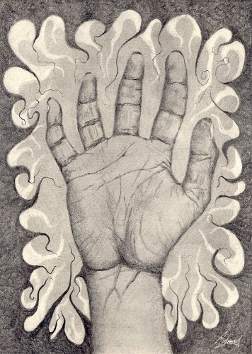 Drawing of a hand laid open