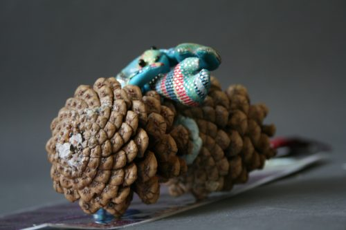 David James Lobster Sunbathing on a Pine Cone
