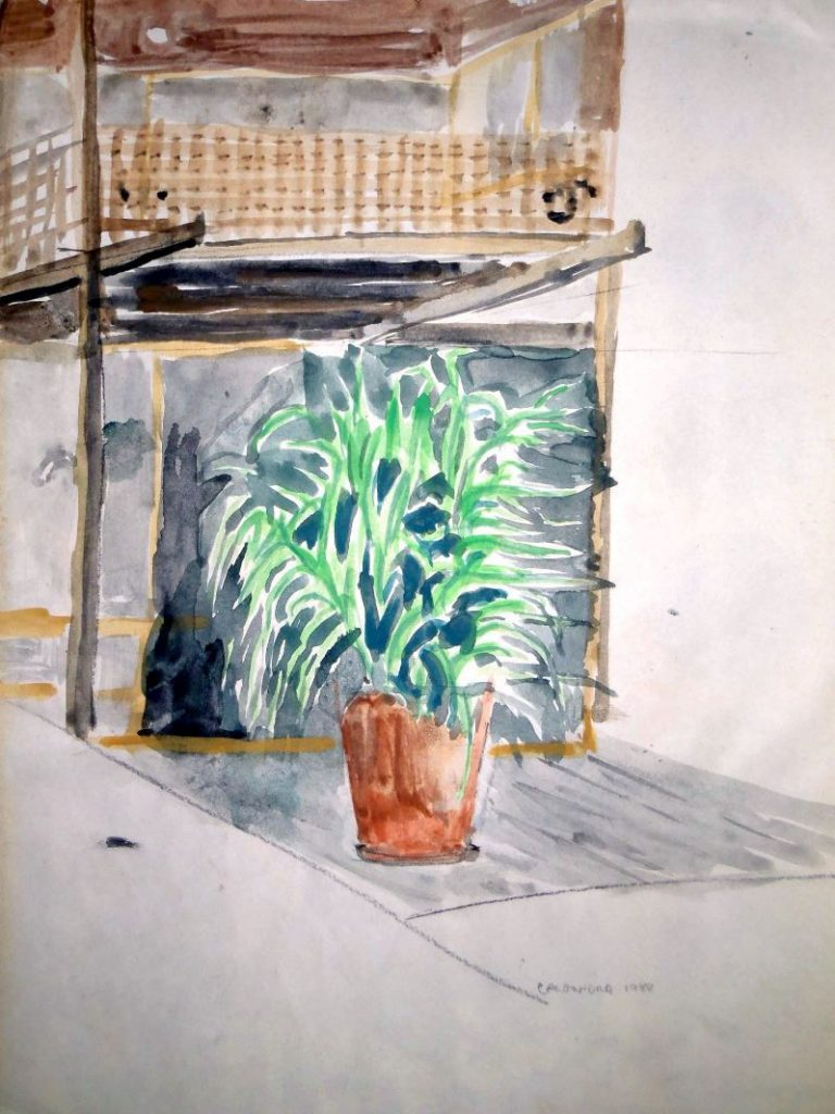 watercolour painting of a pot plant on a veranda