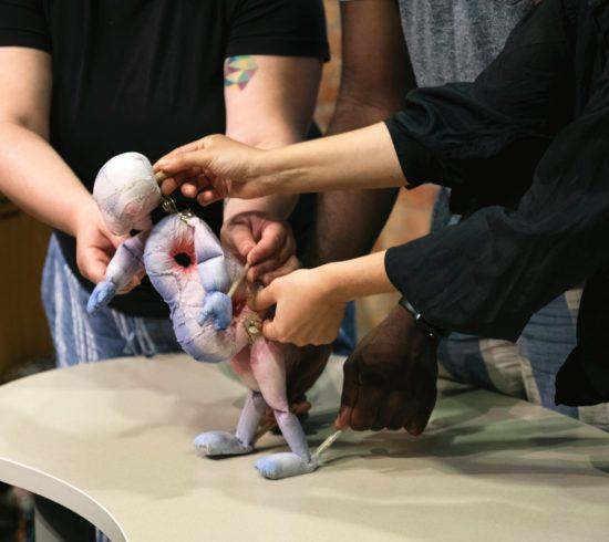 Four hands manipulate a puppet