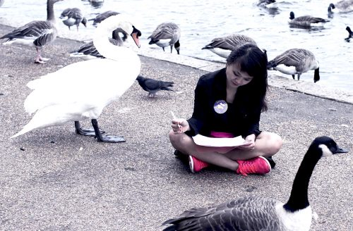 Woman drawing next to some ducks