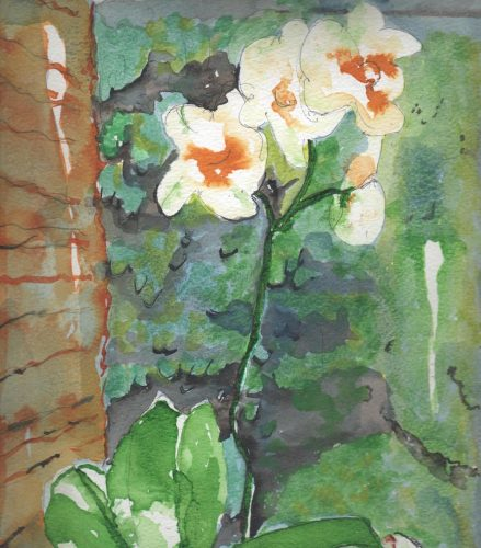 Watercolour painting of a white flower
