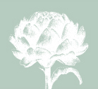 Artichoke logo