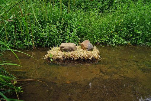 two large stones sit on a clump of grass in a river