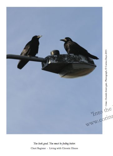 Two crows face each other off, perched on a street lamp against a blue sky