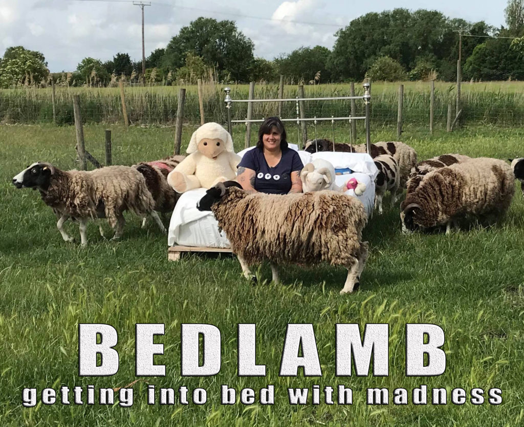Woman sitting in bed surrounded by sheep