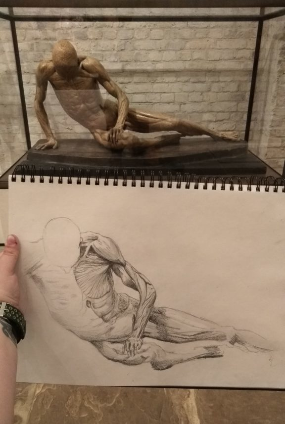 At the top of the image, there is a anatomical sculpture of a man reclining. At the bottom of the drawing is a half-completed detailed drawing of the sculpture.