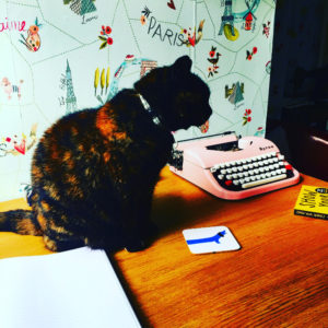 A cat sits on a desk next to a pink typewriter . The wall behind features Paris patterned wallpaper