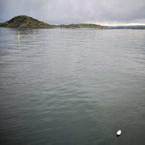 five tiny paper boats can be seen floating on a large body of water. The sky is moody and a small island can also be seen.