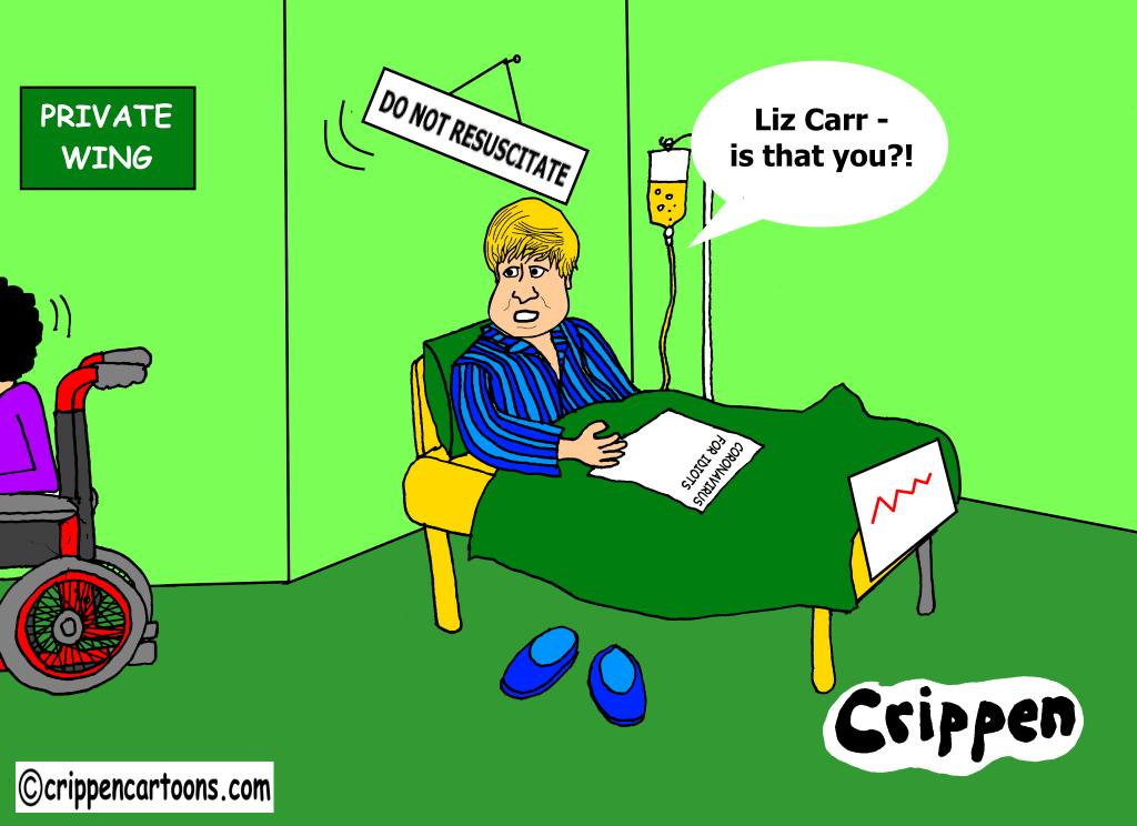 do not resuscitate cartoon