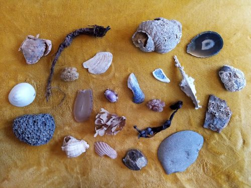 photo of a group of stones and seashells laid out on sand