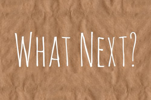 What Next? in white capitals on a orange background.