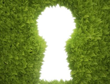 An image of a white keyhole surrounded by leaves