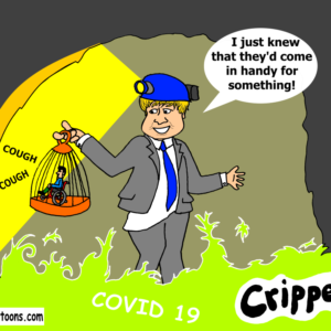 "Boris Johnson is down a mine holding up a cage with a small disabled figure in it. He is wearing a miner's helmet. Around his feet is a gassy mist identified as Covid 19. He is saying: ""I knew they'd come in useful for something!"""