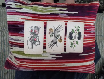 3 cards on a cushion. The card to the left has a torso with pink flowers bursting from it and says lust on the bottom. The card in the middle has two conjoined hands, one going up and the other one down, on either side of where the wrists touch yellow flowers sprout out, it says opposition. The third card has two lung black lungs with leaves and red berries sprouting up and down, it says toxic.