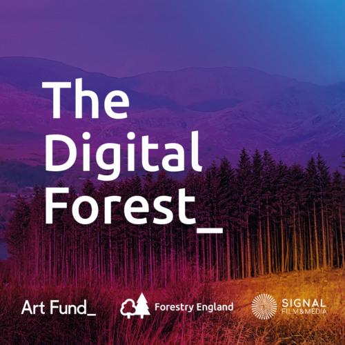 A photo of a forest in front of hills in hues of pink & purple. Text 'The Digital Forest_' is across the image in white.