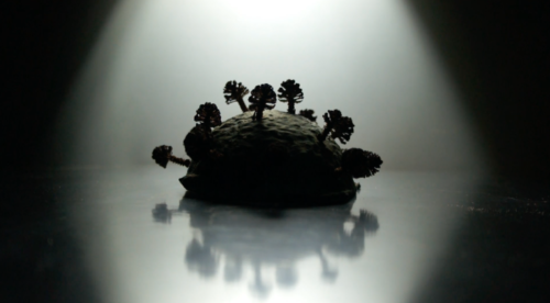 A silhouette shape similar to a coronavirus microbe