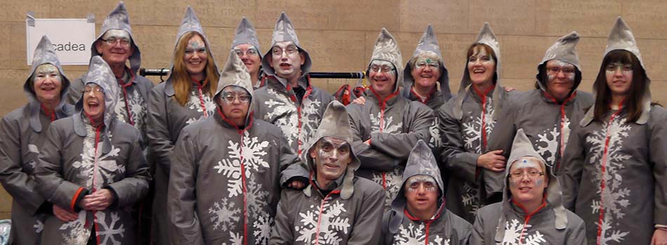 photo of a group of performers dressed as snowflakes