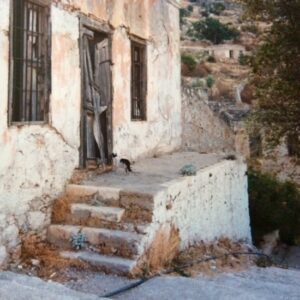 A derelict home in a mountain village, with a cat staring at the front door