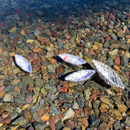 photo of four paper boats floating on water