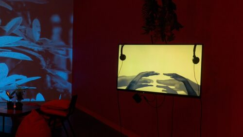 A photograph of a television screen installed in a dimly lit and cosy exhibition space. On the screen is a pair of hands gestuing against a yellow background. In the space are cushions, a potted plant, hanging ivy, and a large wall projection of blue vegetation.