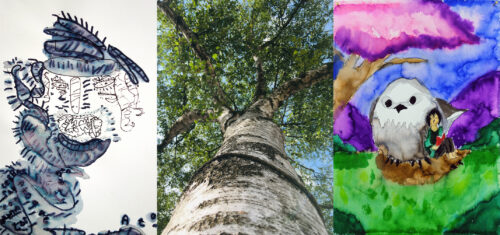 3 artworks. The first is a creature made up a series of lines, with its mouth wide open painted mostly in blue. The second is a photograph looking up a tree trunk from it base towards the canopy. The third is painting of a person sat with an owl in a nest on the floor. They are sat on green grass below a purple tree.