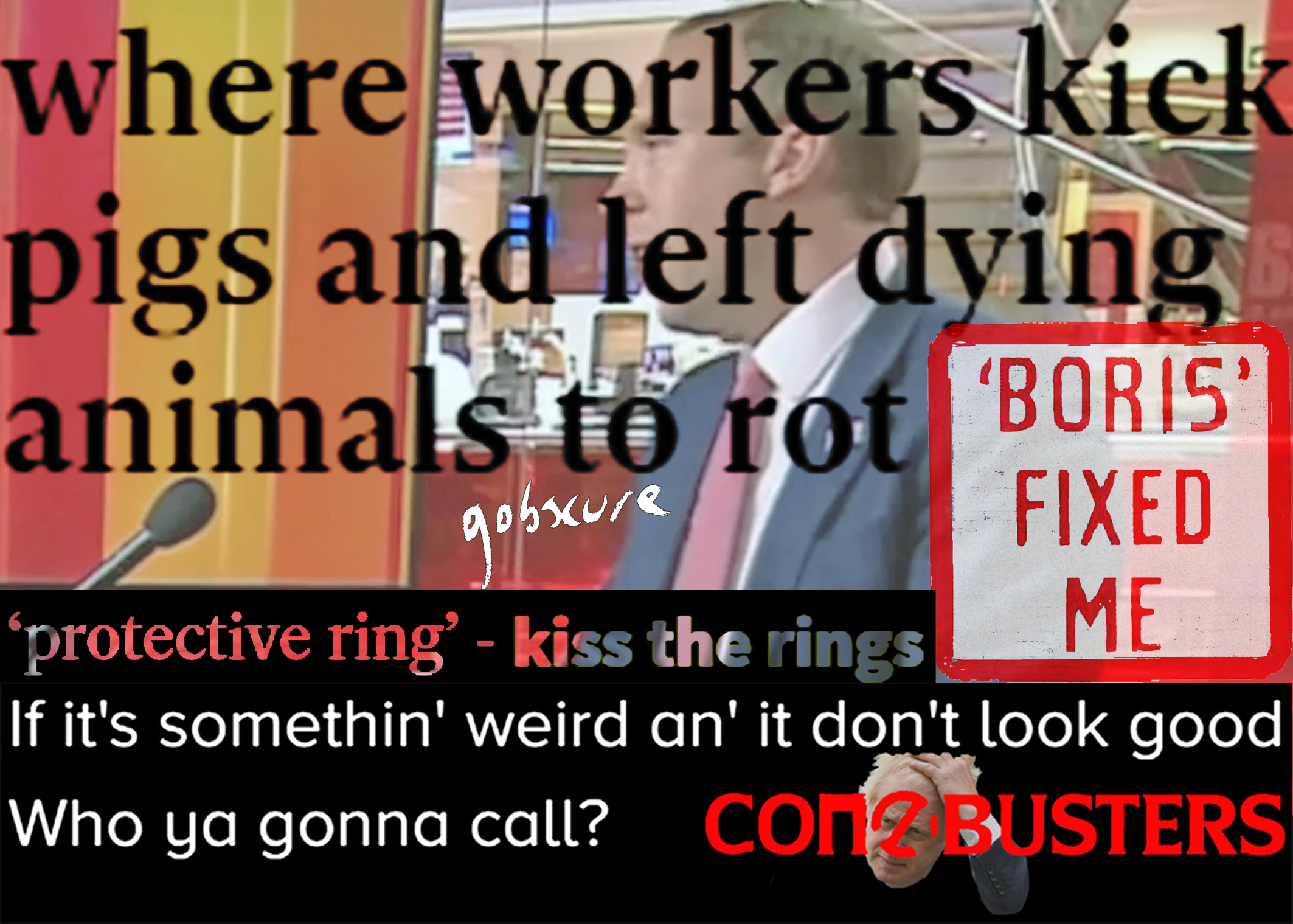 Collage of Matt Hancock with headlines where workers kick pigs and left dying animals to rot. Protective ring - kiss the rings. If it's something weird and it don't look good, who you gonna call? Conbusters