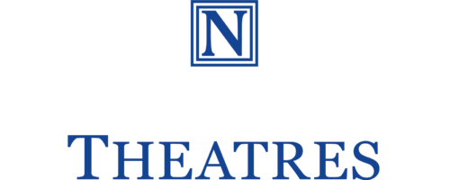 Capital N in a blue outline of a square, above Nederlander in white capitals and Theatres in Blue capitals.