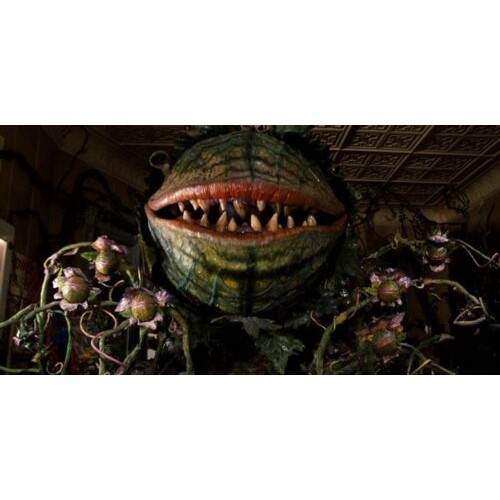 A giant plant with a mouth, sharp teeth and lots of small buds, each with a small mouth, faces the camera.